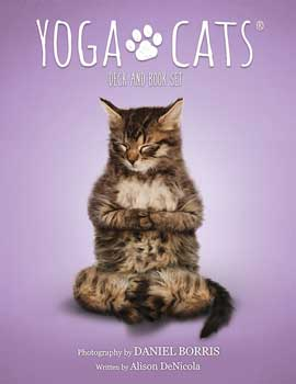 Yoga Cats tarot by Borris & DeNicola